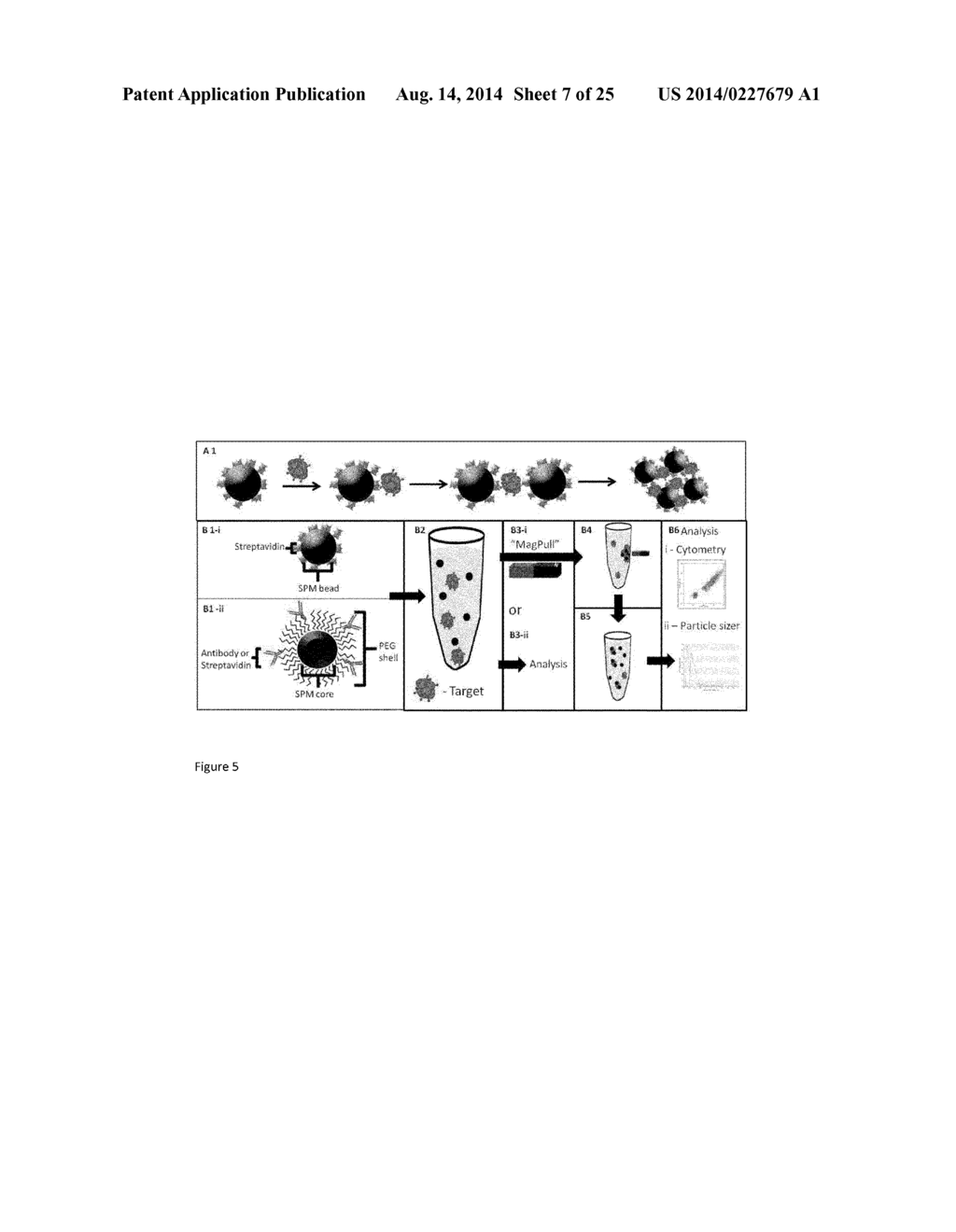 hight resolution of magnetic bead aggregation assay system diagram schematic and image 08