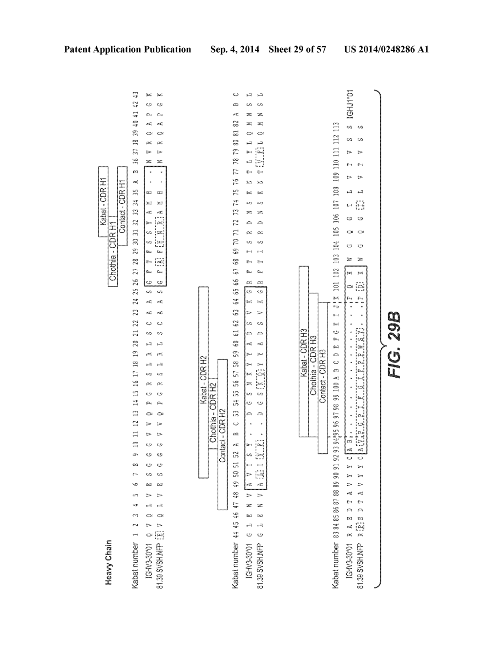 hight resolution of anti hemagglutinin antibodies and methods of use diagram