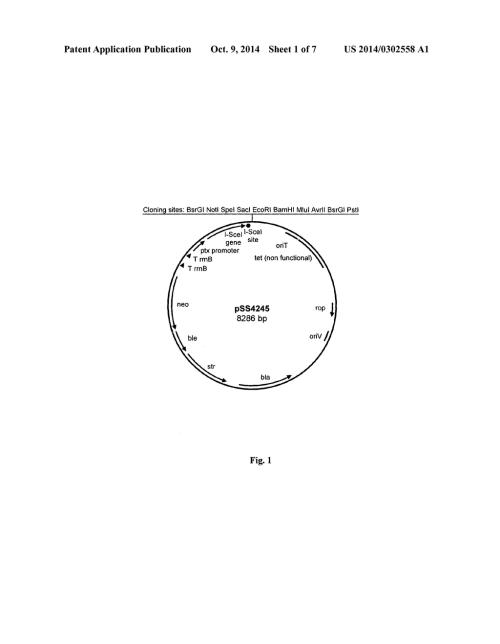 small resolution of pertussi diagram