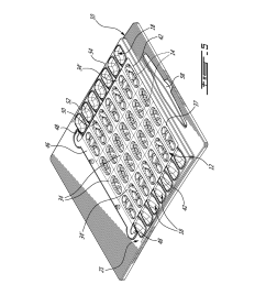 blister sheet holder for the verification of the contents thereof diagram schematic and image 05 [ 1024 x 1320 Pixel ]