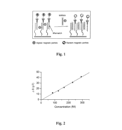 exchange induced remnant magnetization for label free detection of dna micro rna and dna rna binding biomarkers diagram schematic and image 02 [ 1024 x 1320 Pixel ]
