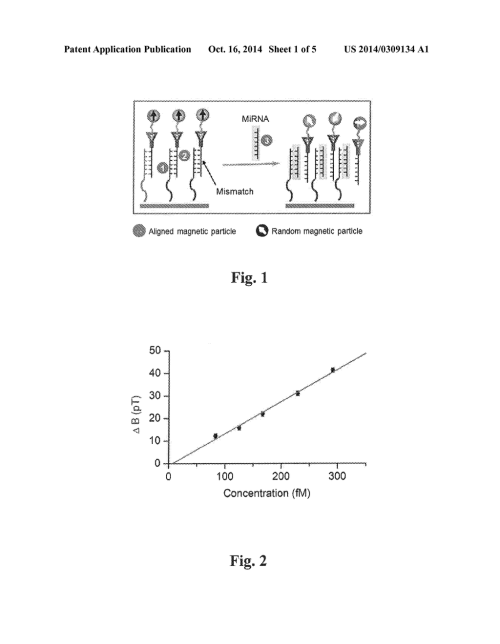 small resolution of exchange induced remnant magnetization for label free detection of dna micro rna and dna rna binding biomarkers diagram schematic and image 02