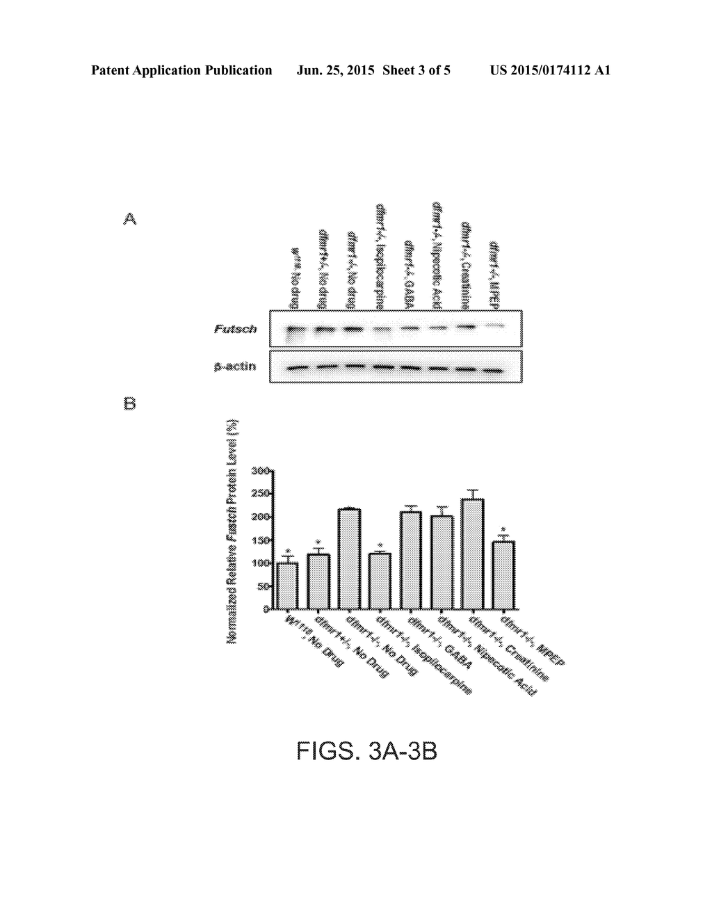 hight resolution of compositions for treating fragile x and other disorders methods of use thereof and screening for compounds for fragile x and other disorders diagram