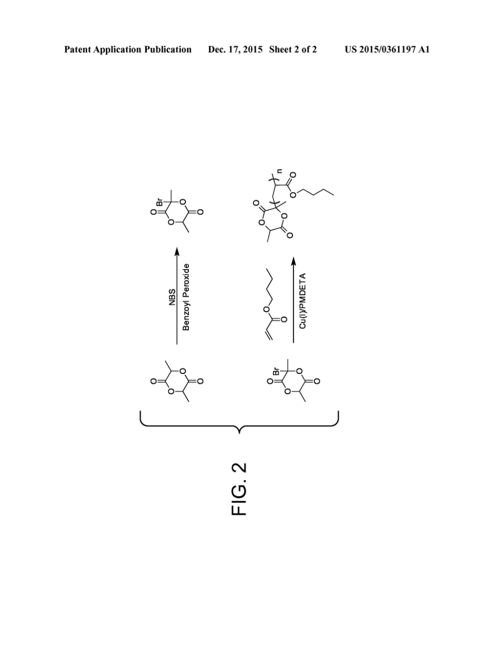 medium resolution of initiation of controlled radical polymerization from lactide monomer diagram schematic and image 03