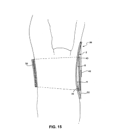 adjustable lordosis orthopedic insert for a back brace diagram schematic and image 12 [ 1024 x 1320 Pixel ]