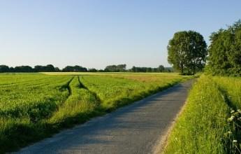 road-sm