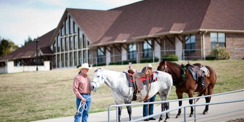 equine therapy at pate