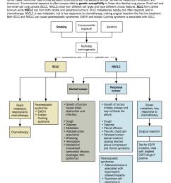 pathophysiology of lung cancer [ 1275 x 1649 Pixel ]