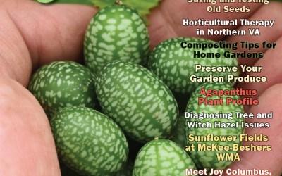 Pathway Homes' Community Garden Featured in The Washington Gardener
