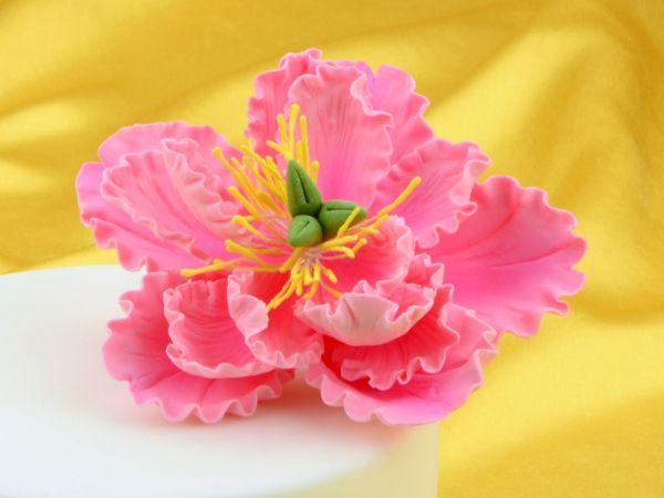 Feinzucker Blte Peony pink  Bouquets  PatiVersand