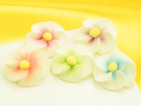 Apfelblten bunt Zucker 5 Stck  Blumen  PatiVersand