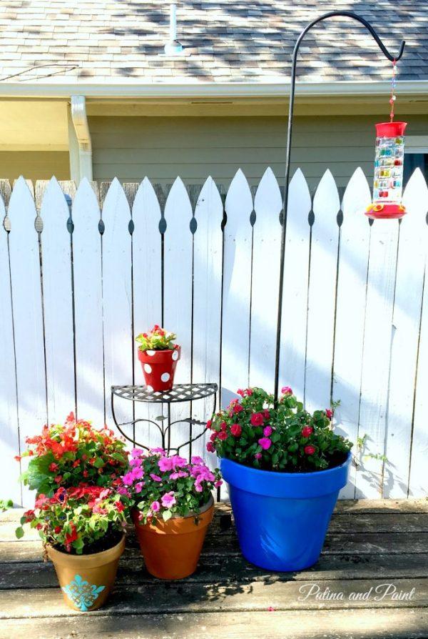 My Garden 5