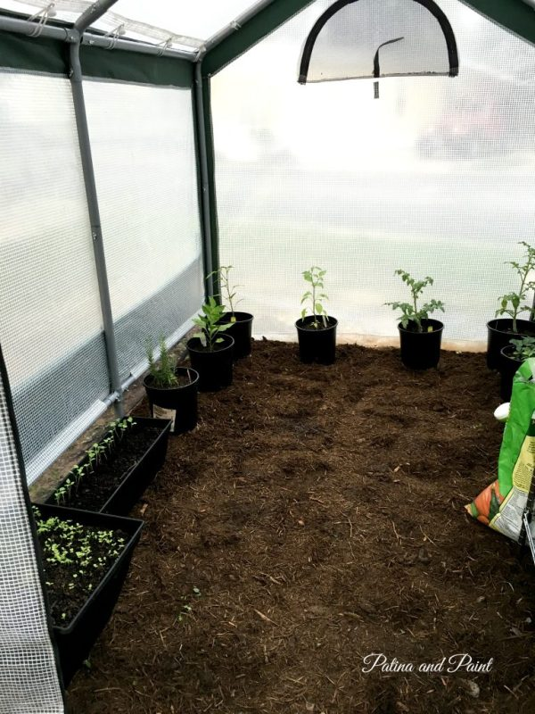 Ryan's RV greenhouse 1