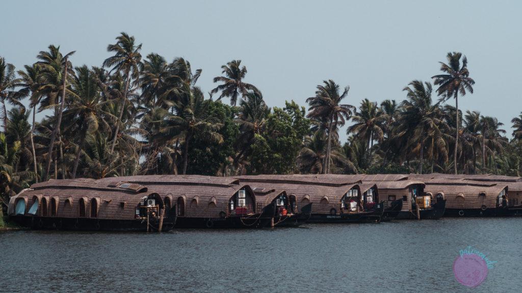 navegar los backwaters de kerala - india - Patoneando blog de viajes