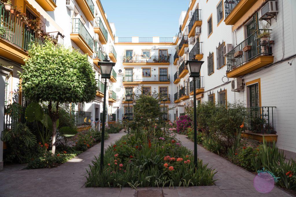 cosas que hacer en sevilla -Barrio Santa Cruz, Sevilla - Patoneando blog de viajes