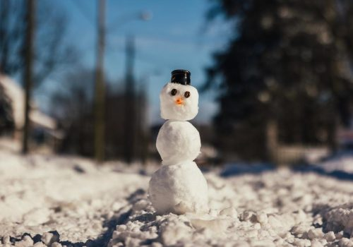 snowman-on-a-winter-afternoon_925x