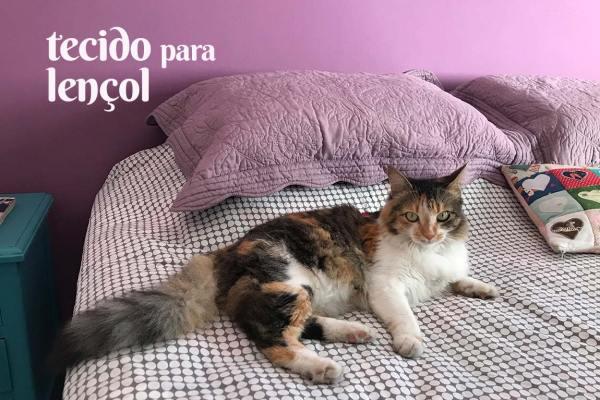 lojas com tecido para lençol   Patricia Cardoso