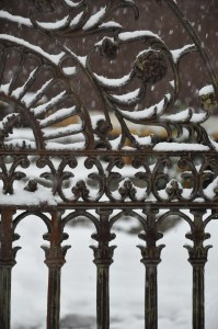 snow on the garden gate