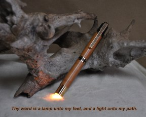 hand turned wood pen/ light