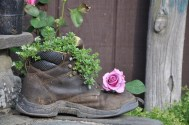 Work boot and Rose