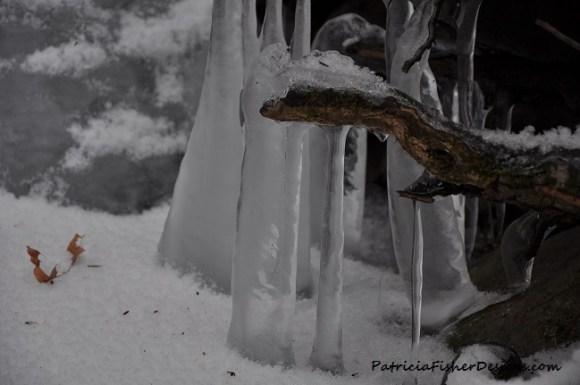 frozen creek in NY