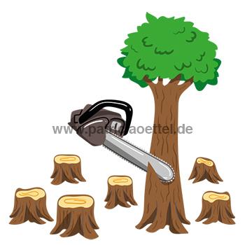 Grafik 3 Abholzung Palmöl