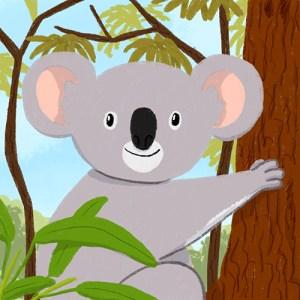 Memo Koala