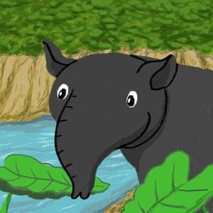 Memo Tapir