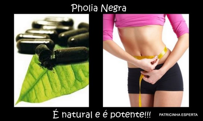 Blog99 - Fitoterápicos Que Emagrecem: Pholia Negra