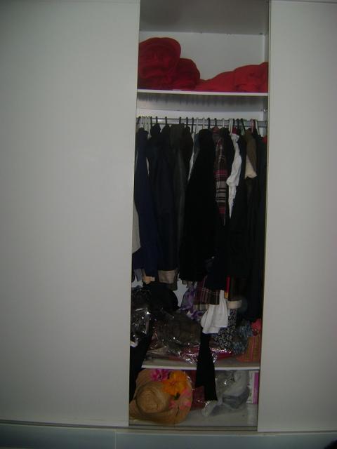 DSC01894 - Organizando o Armário - Porque tá na Moda organizar!!!