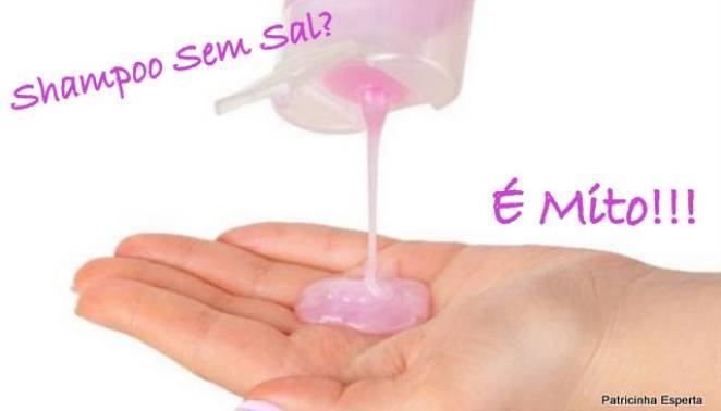 2011 12 192 - Shampoo Sem Sal: Mito?