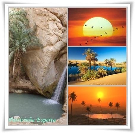 desertos2 - Os desertos da vida