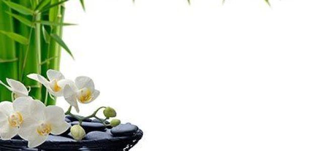 feng shui430x3001 - Aprenda a Ativar a Área da Carreira e  da Prosperidade  Com o Feng Shui