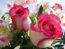 flores - Flores que deixam o cabelo liso e hidratado. Não perca essa novidade!