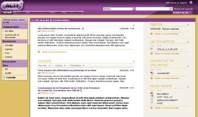 CCAS Habillage pour un intranet SharePoint (dév. Brainsoft)