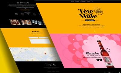 Bière Tête de Mule - Site Wordpress - Design Kristof Guilloteau