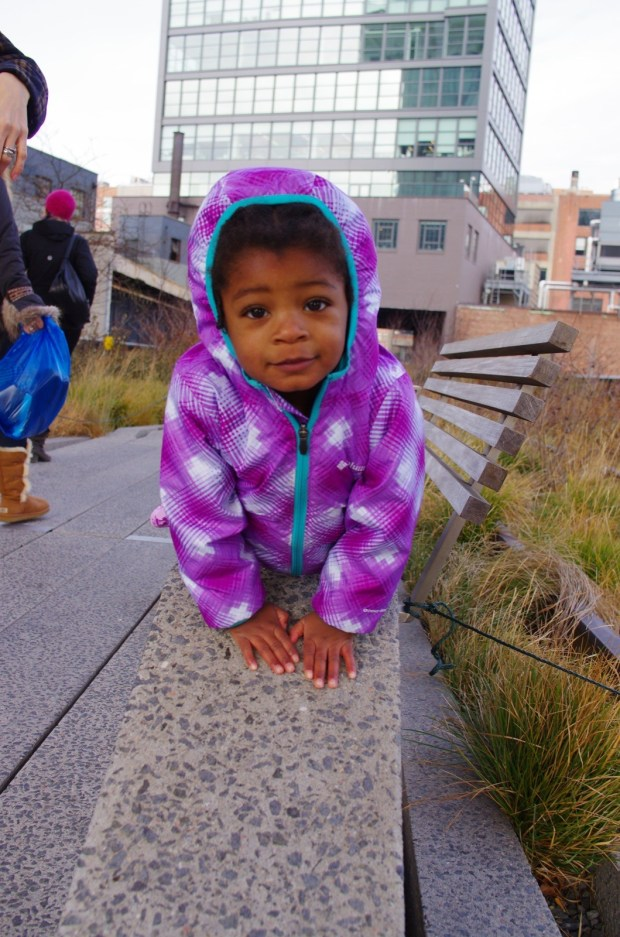 z on the high line