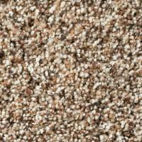 The Royal Collection - Residential Carpet line - 21 Colors