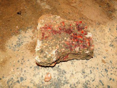 Image result for Homem é detido suspeito de matar o pai a pedradas em Buíque