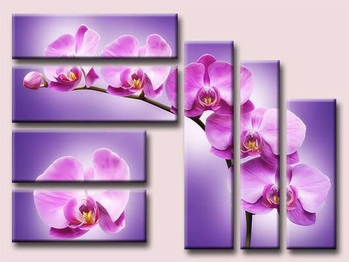 Triptico primaveral de orquideas