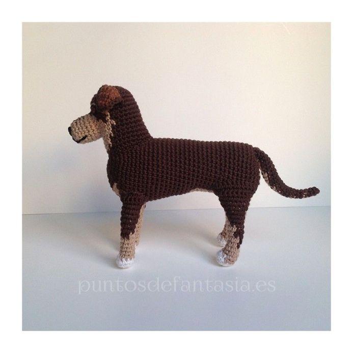 patron-perro-generico 2