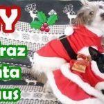DIY Disfraz Santa Claus para mascotas