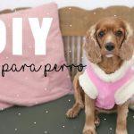 DIY suéter de tela polar para mascota