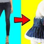 DIY Ideas de ropa para hacer a tus mascotas