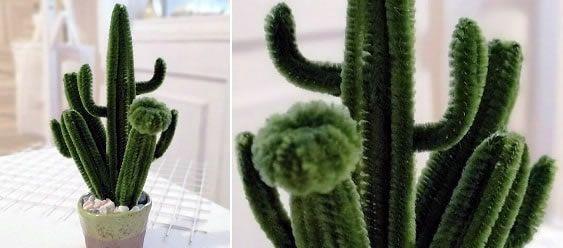 DIY Como hacer un cactus con limpiapipas