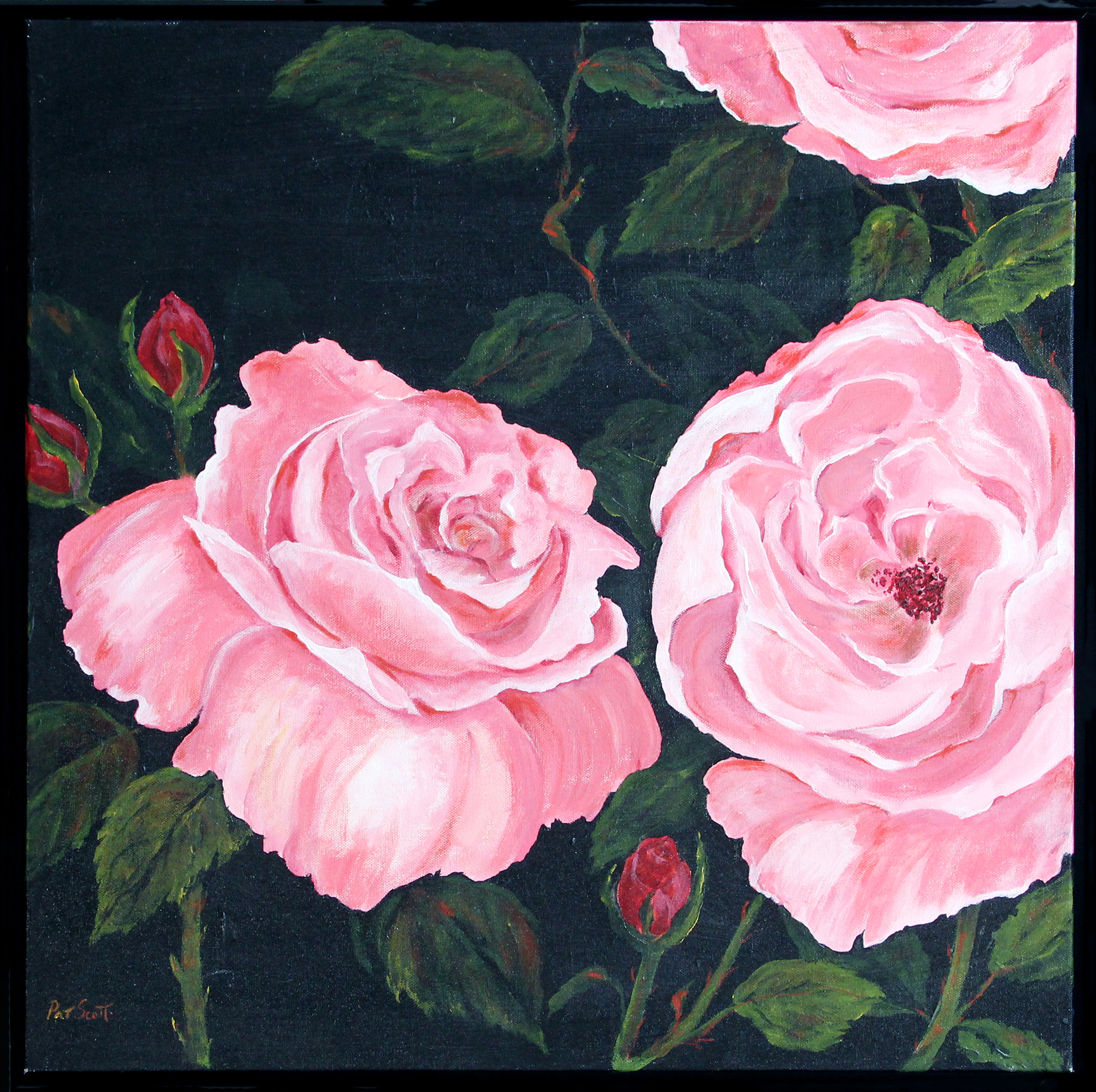 pink rose framed acrylic