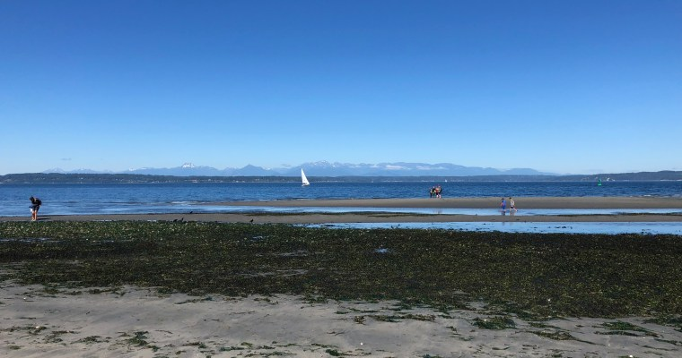 Best Places in Seattle to Play in the Water