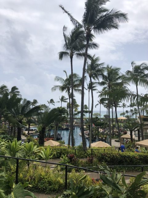 The Grand Hyatt in Kauai, Hawaii #hyatt #grandhyattkauai #kauai #hawaii #hawaiiresorts