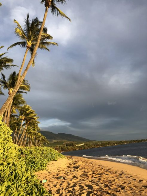 Kaanapali Beach in Maui, Hawaii #kaanapali #beach #maui #hawaii