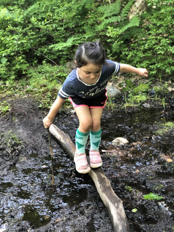 Hiking with Kids #adirondacks #hikingwithkids #hiking #hikeNewYork